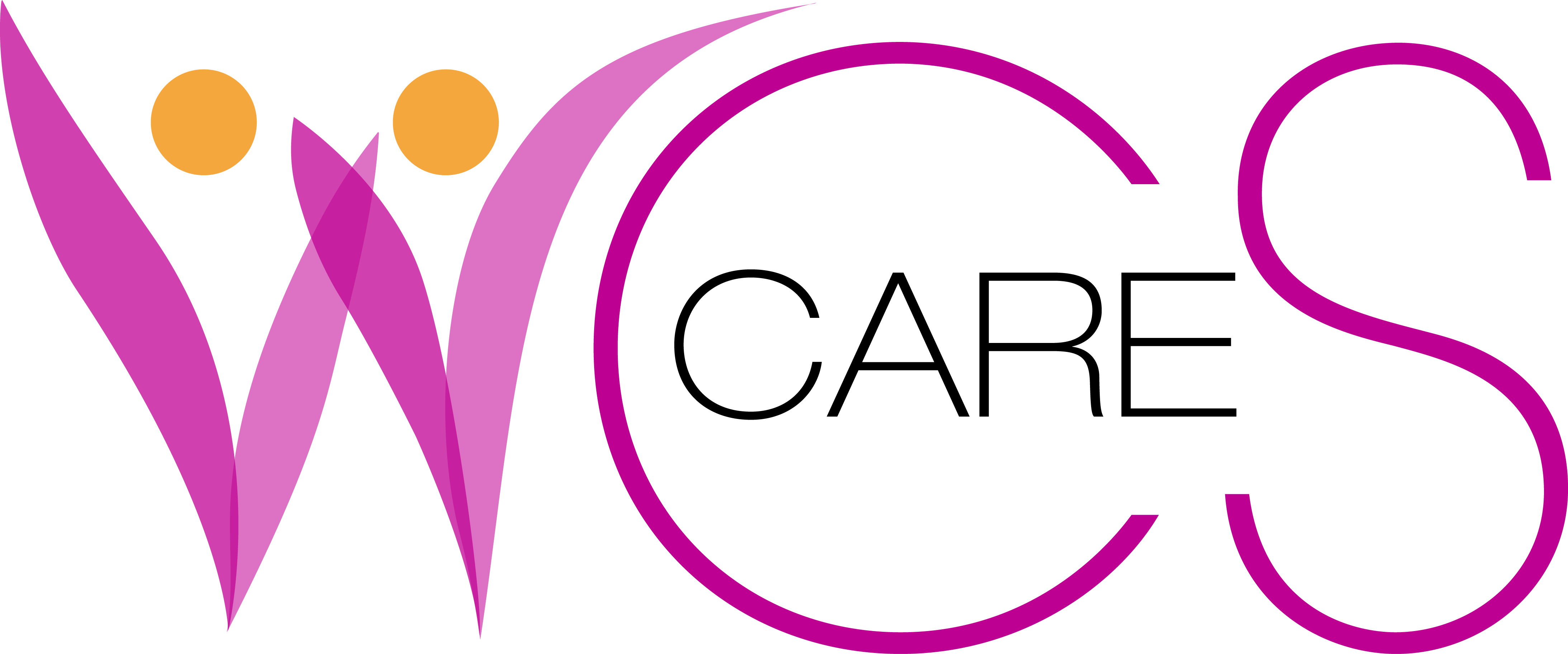 WCS Care Group Ltd